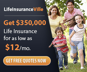 Life InsuranceVille - Are you paying too much for Life Insurance?
